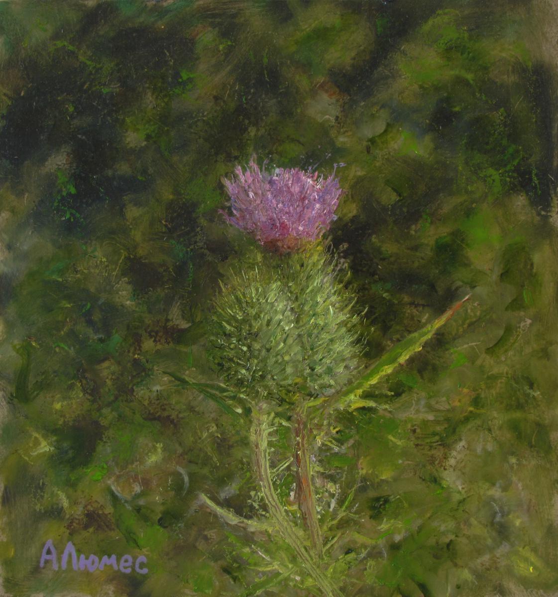 Andrew Lumez. Thorny flower
