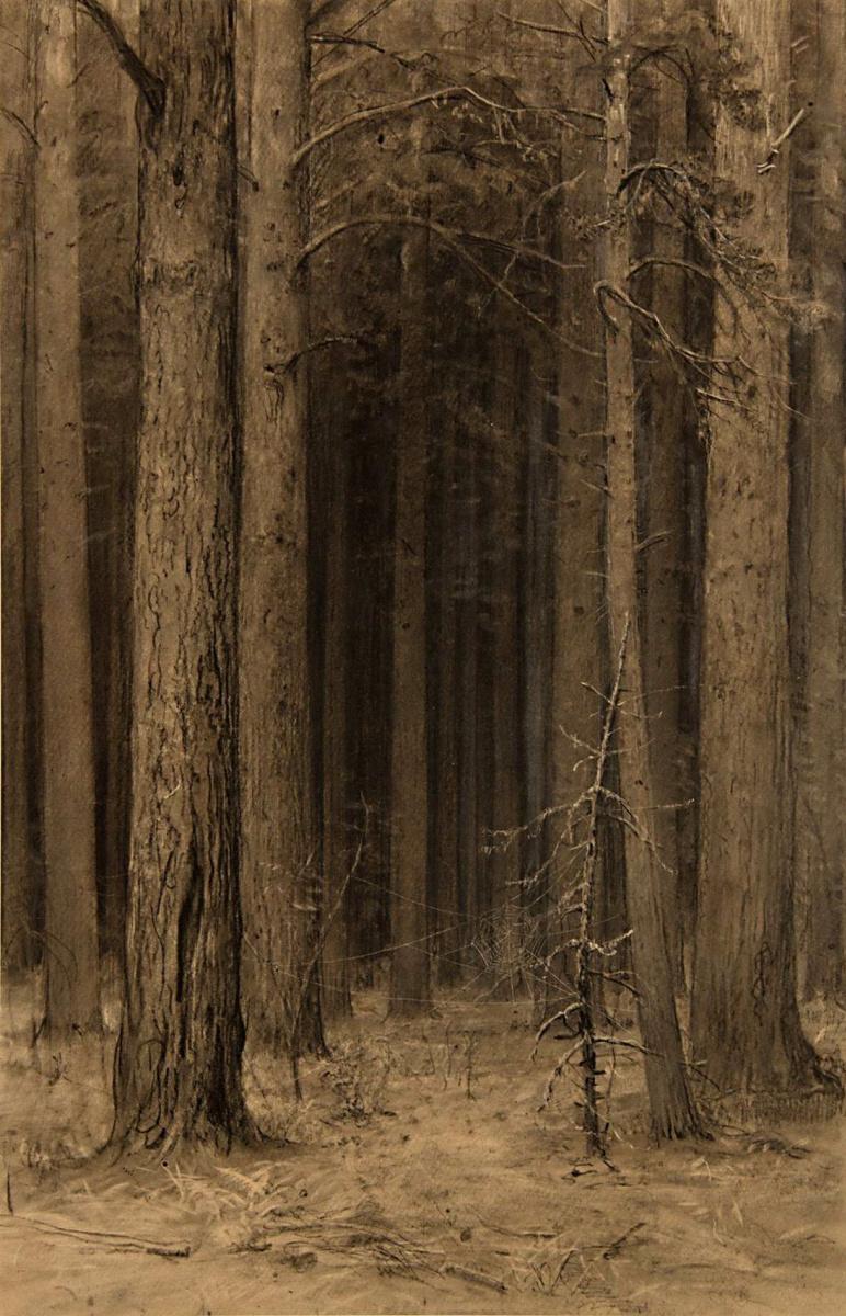 Иван Иванович Шишкин. Паутина в лесу