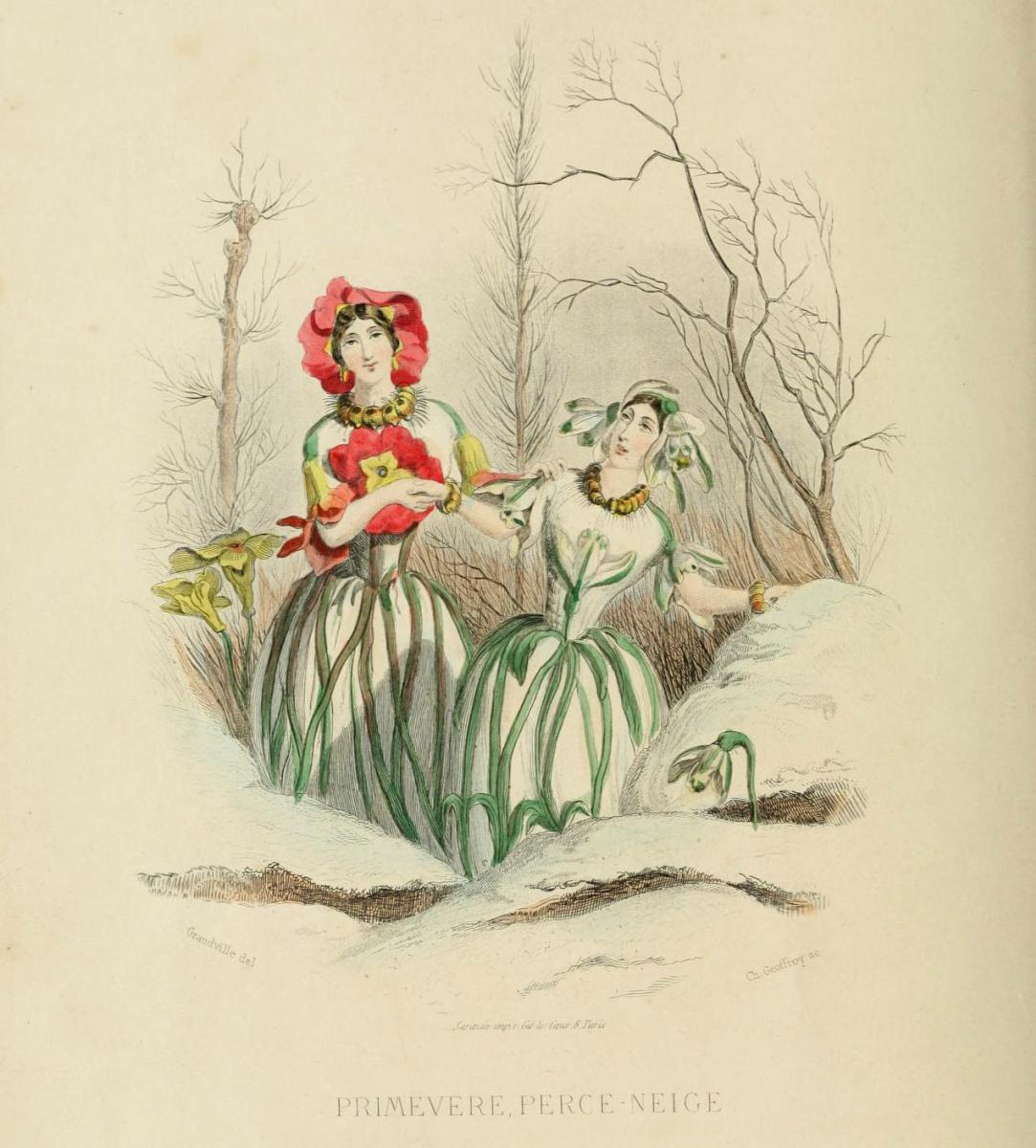 "Jean Inias Isidore (Gerard) Granville. Primrose and snowdrop. The series ""Animate Flowers"""