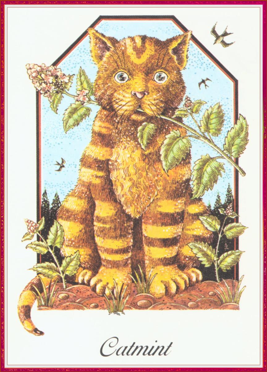 Марк Редди. Рыжий кот