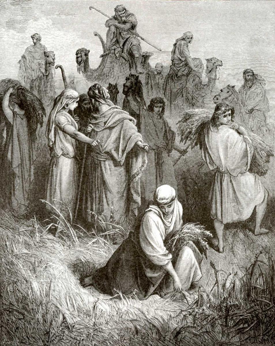 Поль Гюстав Доре. Иллюстрация к Библии: на поле Вооза