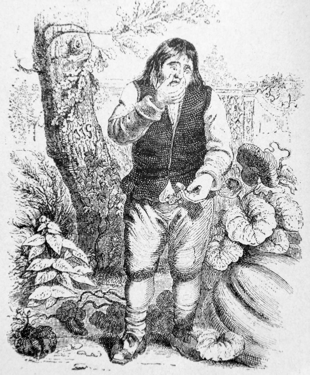 Жан Иньяс Изидор (Жерар) Гранвиль. Желудь и Тыква. Иллюстрации к басням Жана де Лафонтена