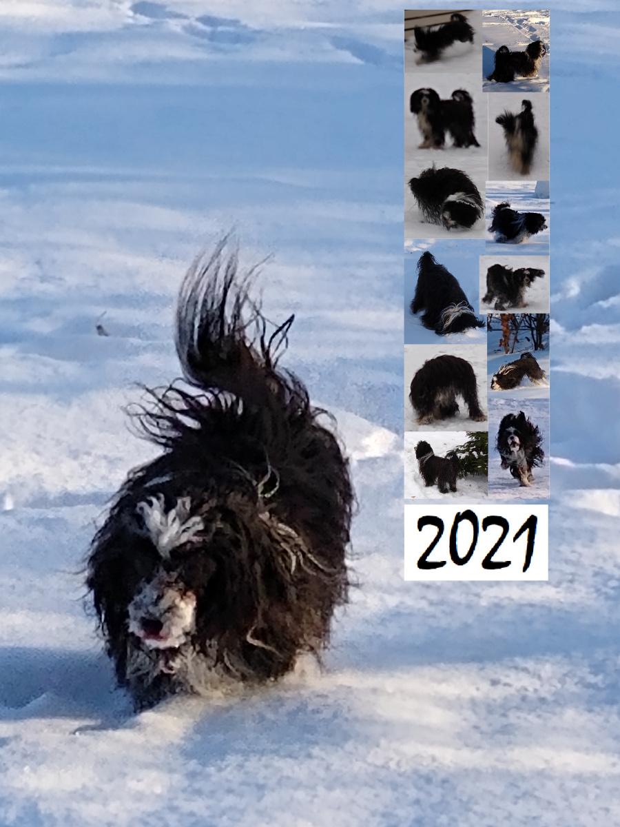 Natalya Garber. Feliz año nuevo 2021 :)