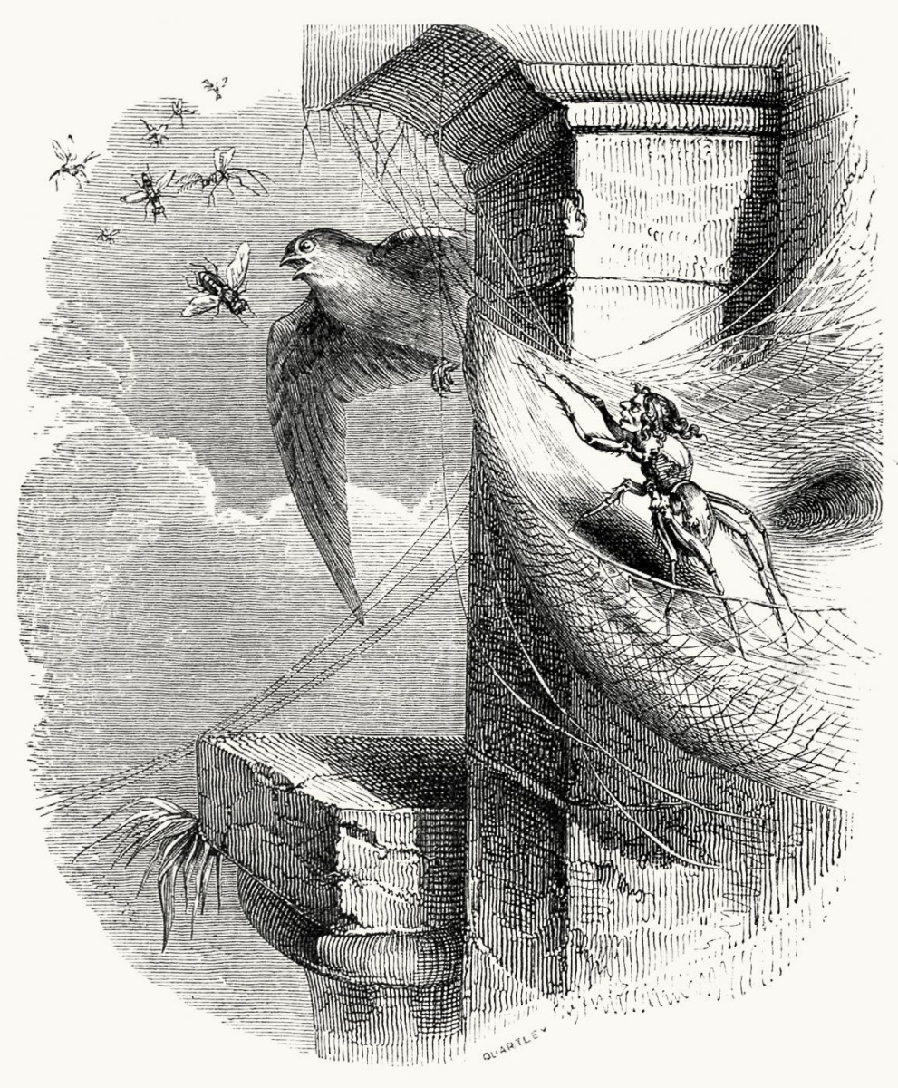 Jean Inias Isidore (Gerard) Granville. Spider and Swallow. Illustrations to the fables of Jean de Lafontaine
