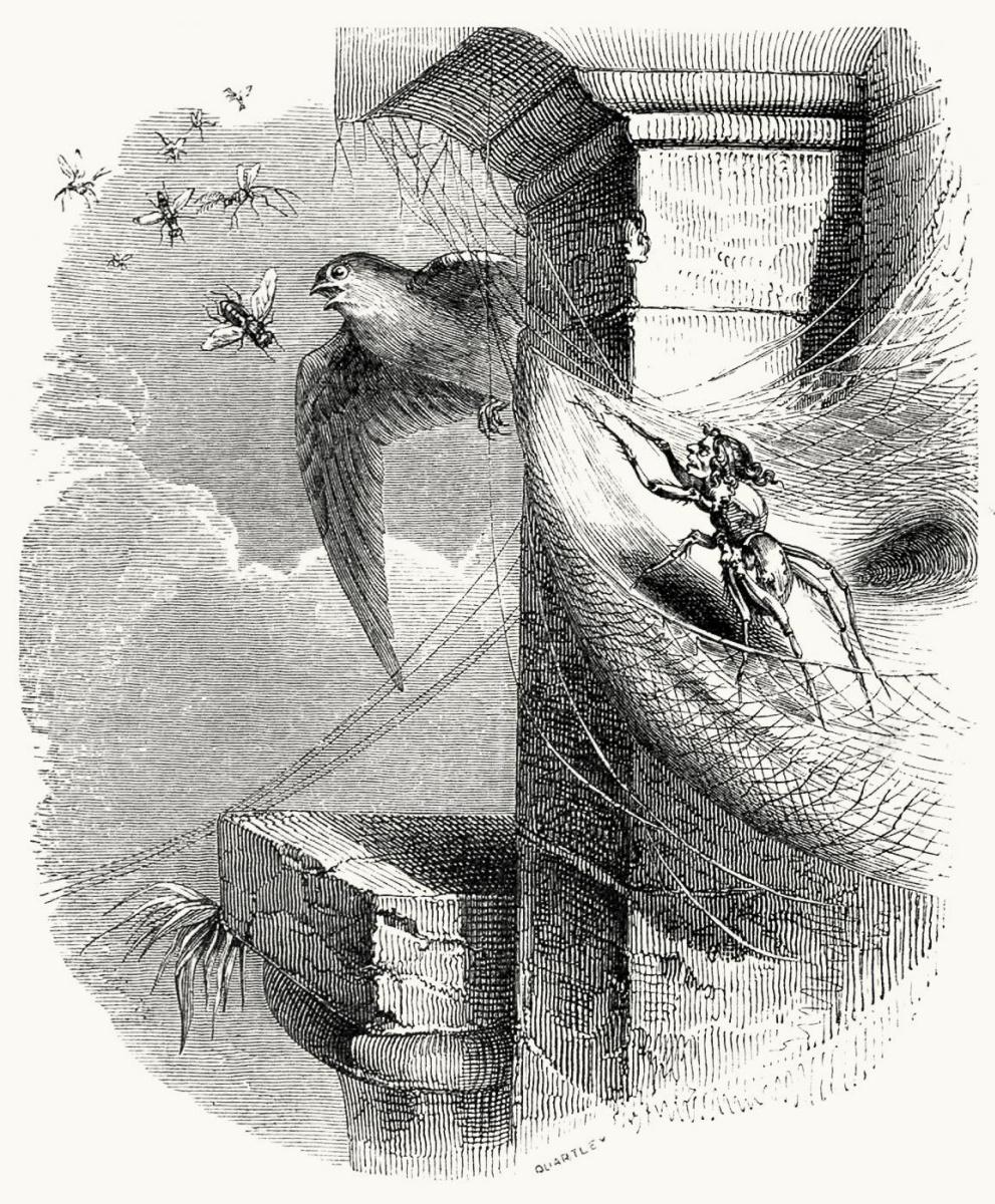 Жан Иньяс Изидор (Жерар) Гранвиль. Паук и Ласточка. Иллюстрации к басням Жана де Лафонтена