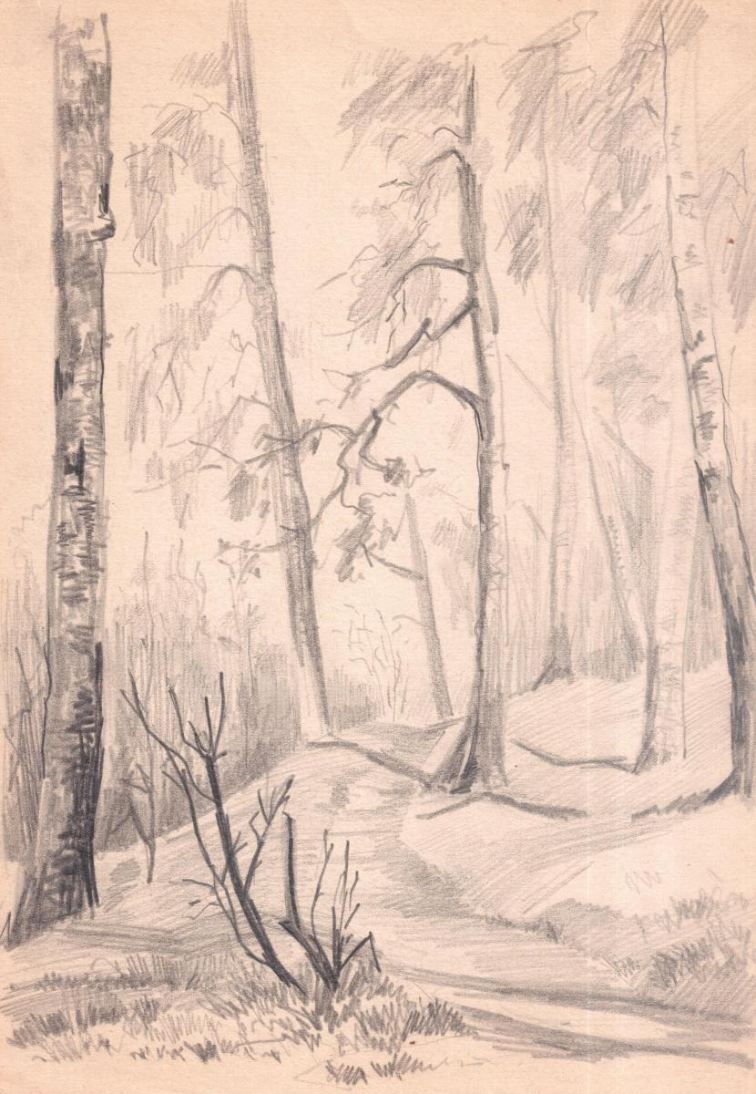 Arkady Pavlovich Laptev. Path