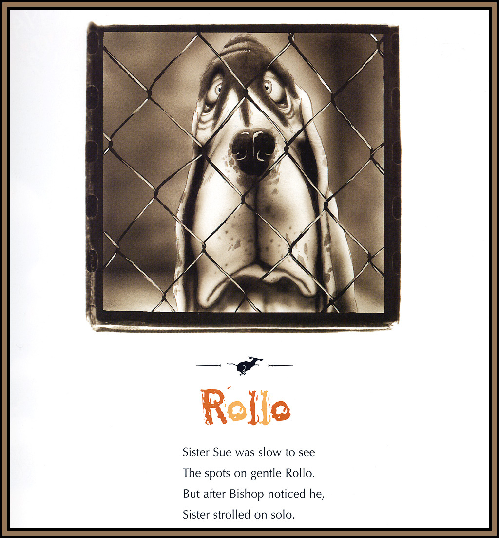 Berkeley Brisade. Troubled dogs 16