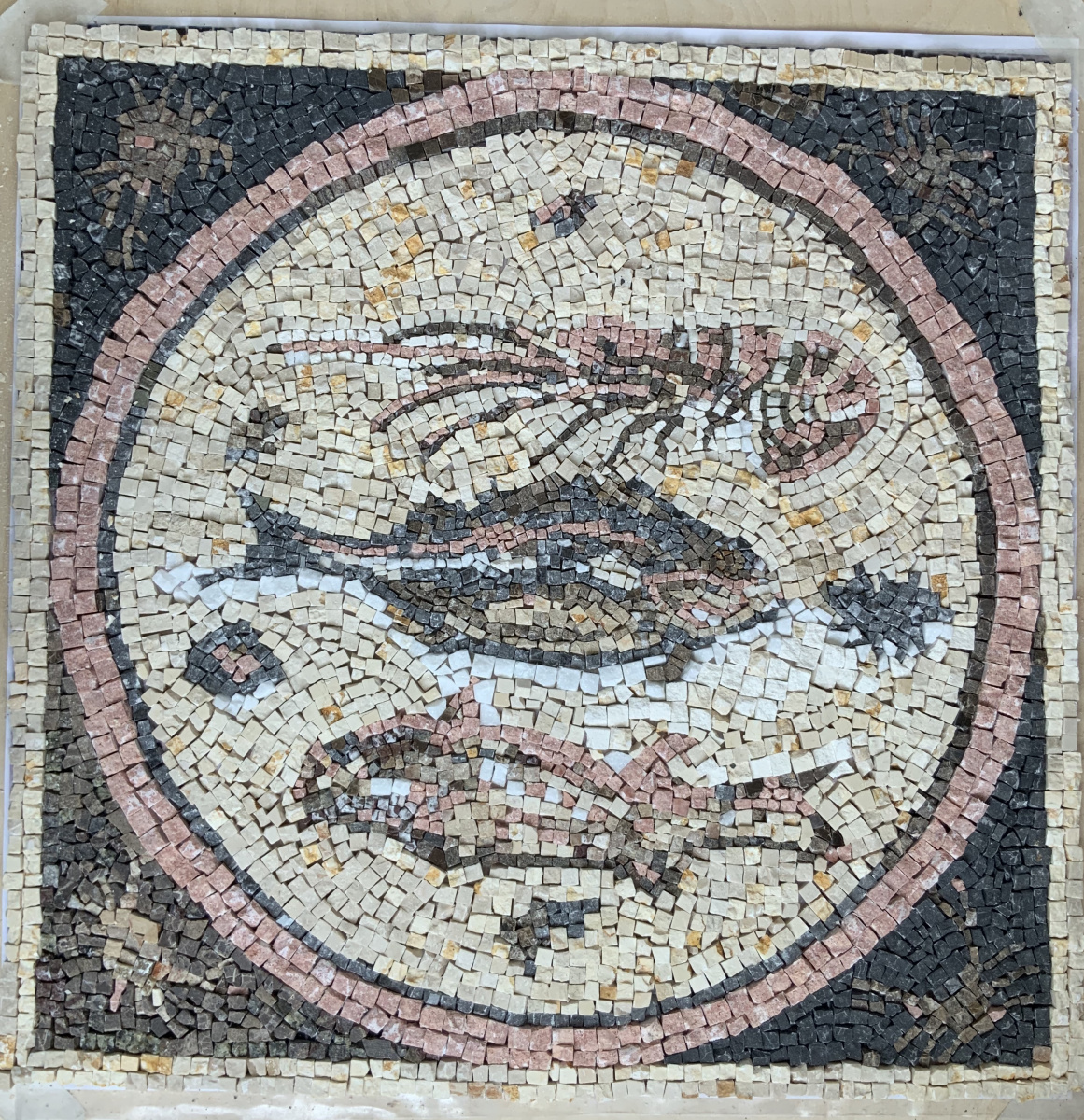 Elena Klimentova. Fish