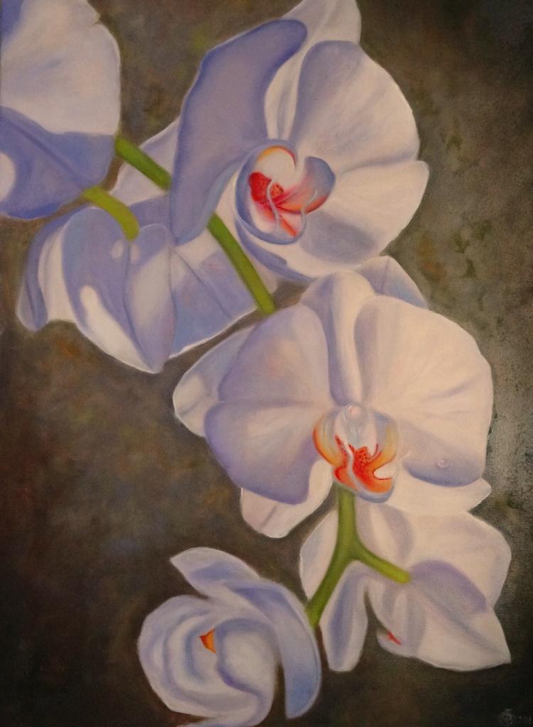 Victoria Fedorovna Humanenko. Orchid
