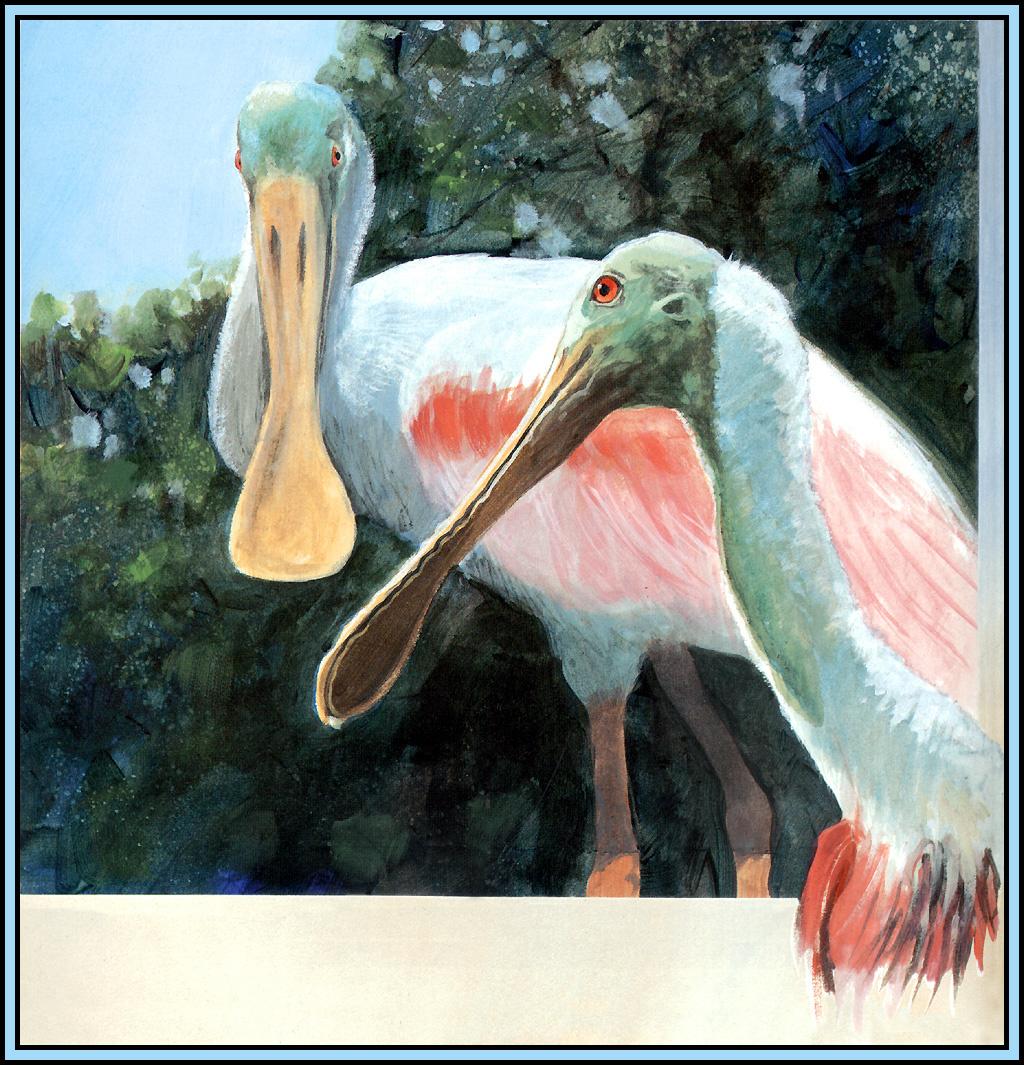 Roger Bansemer. Pink Heron