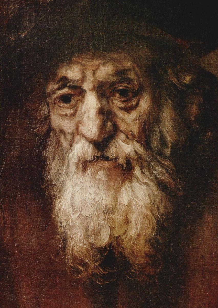 Рембрандт Ван Рейн. Портрет старика еврея, фрагмент