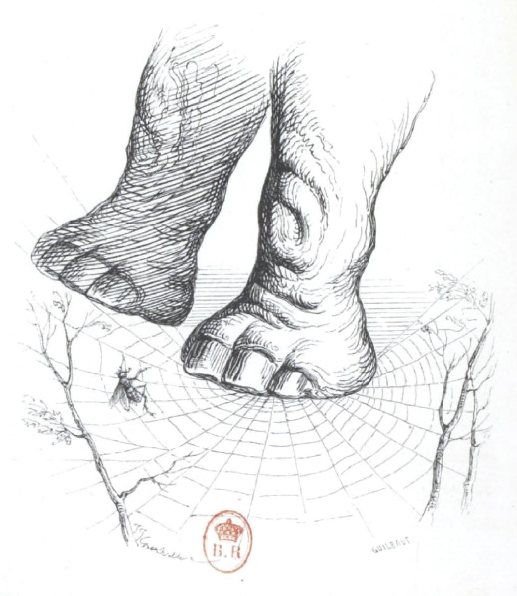 """Жан Иньяс Изидор (Жерар) Гранвиль. Слон в паучьем гамаке. """"Сцены общественной и частной жизни животных"""""""