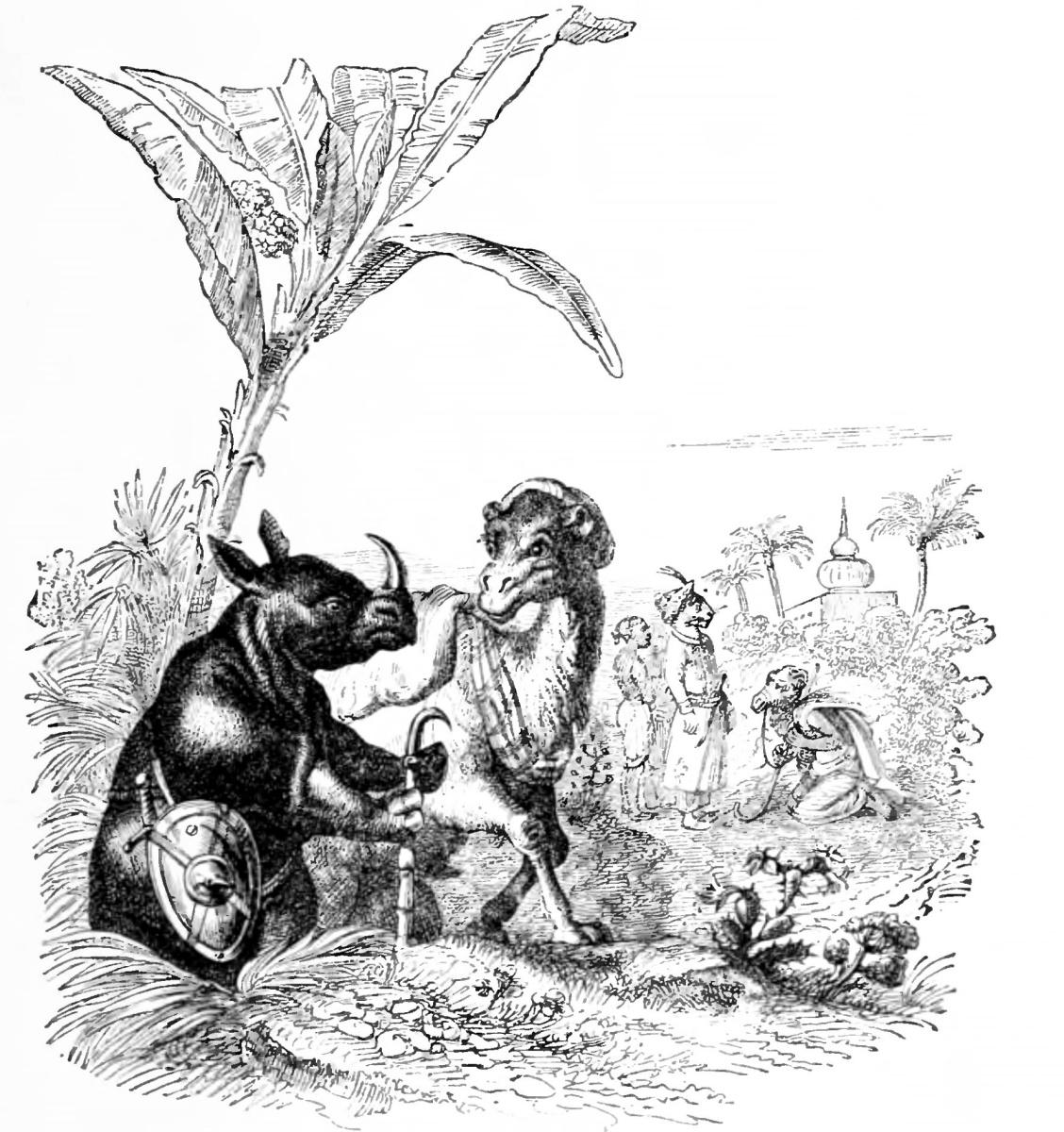 Жан Иньяс Изидор (Жерар) Гранвиль. Верблюд и Носорог. Иллюстрации к басням Флориана