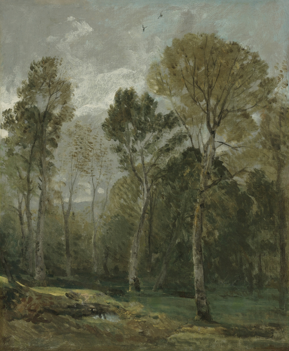 John Constable. Coppice. Eastern Bergholt