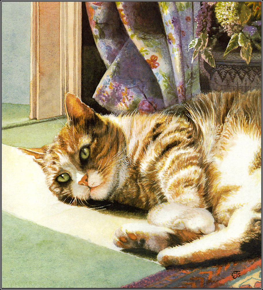 Krissy Snelling. Cat resting