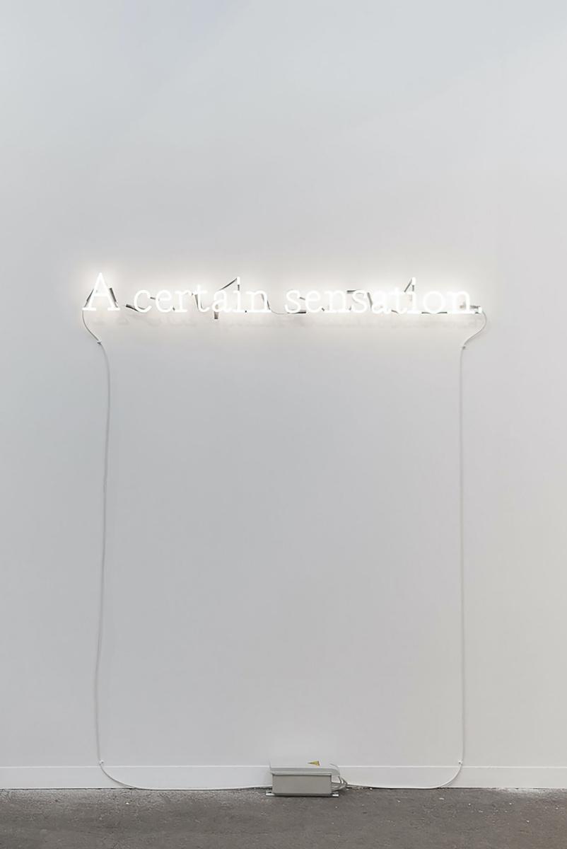 Joseph Kosuth. Private Language I (PI) '[White]