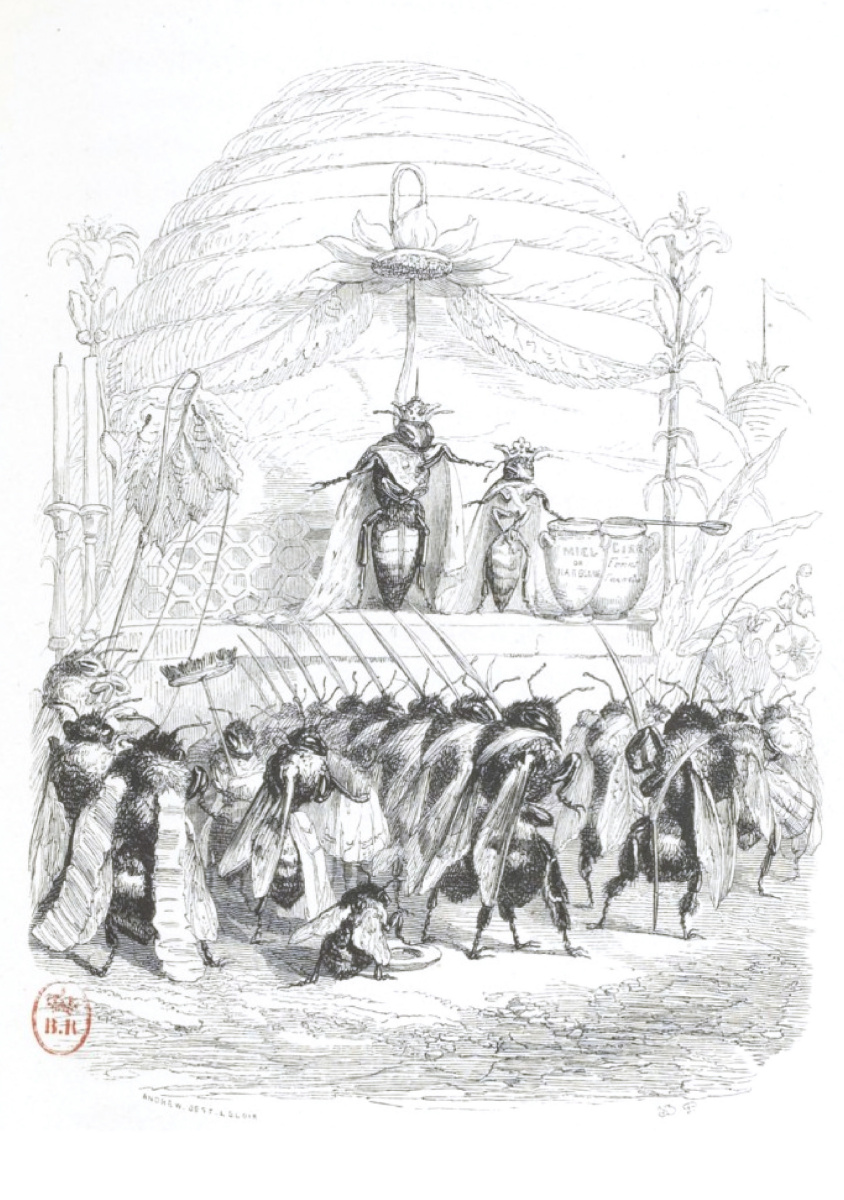 """Жан Иньяс Изидор (Жерар) Гранвиль. Королева улья Титималия. """"Сцены общественной и частной жизни животных"""""""