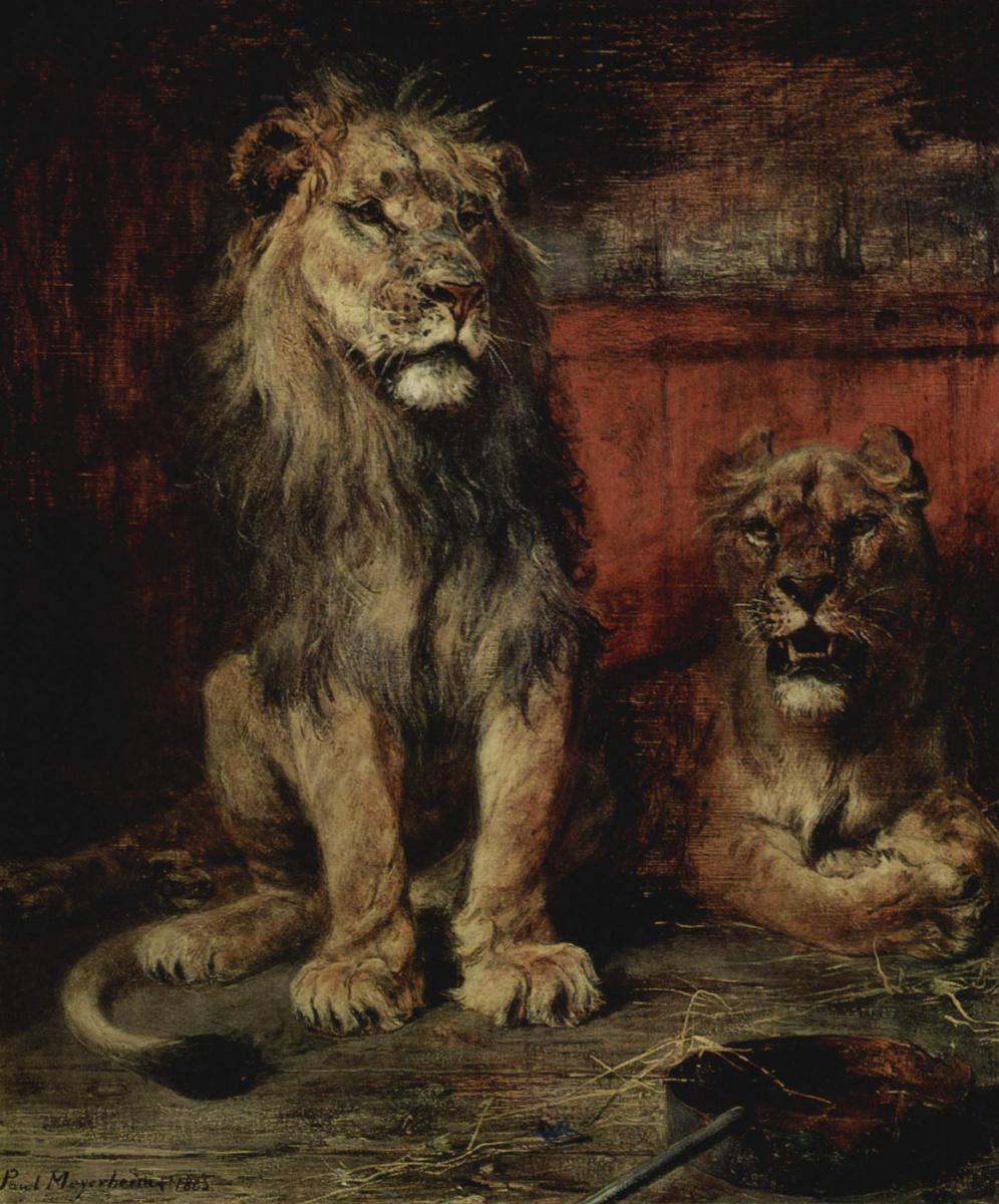 Paul Friedrich Mayerheim. Lions