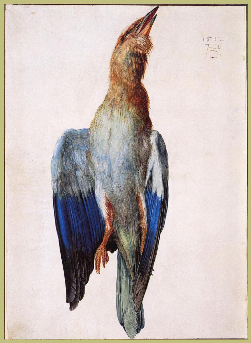 Альбрехт Дюрер. Мертвая птица