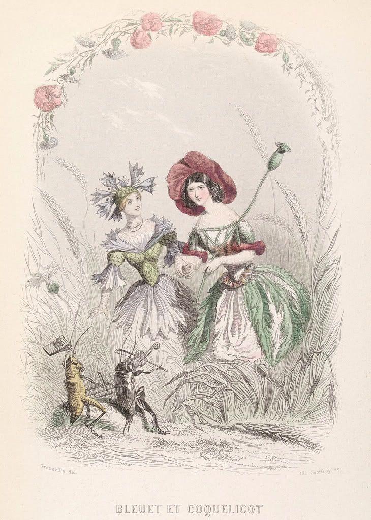 "Jean Inias Isidore (Gerard) Granville. Cornflower and wild poppy. The series ""Animate Flowers"""
