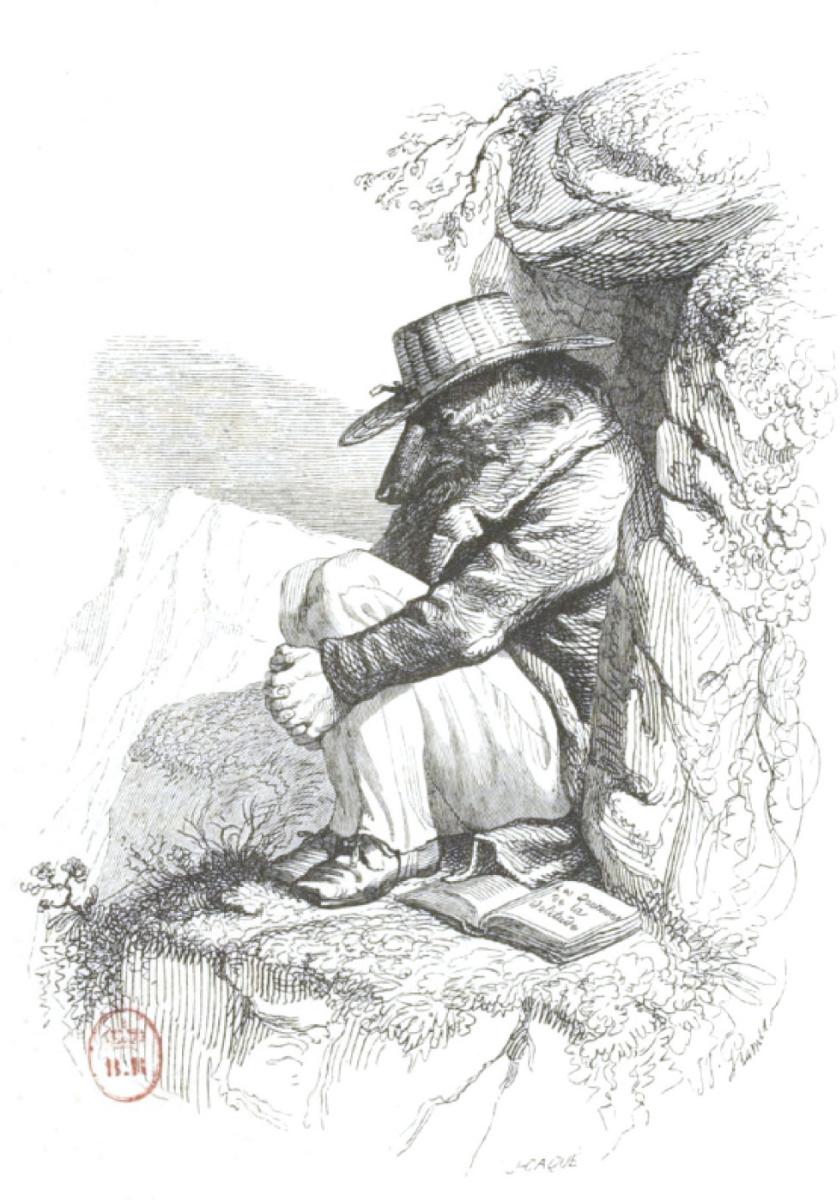 """Жан Иньяс Изидор (Жерар) Гранвиль. Приют на скале. """"Сцены общественной и частной жизни животных"""""""