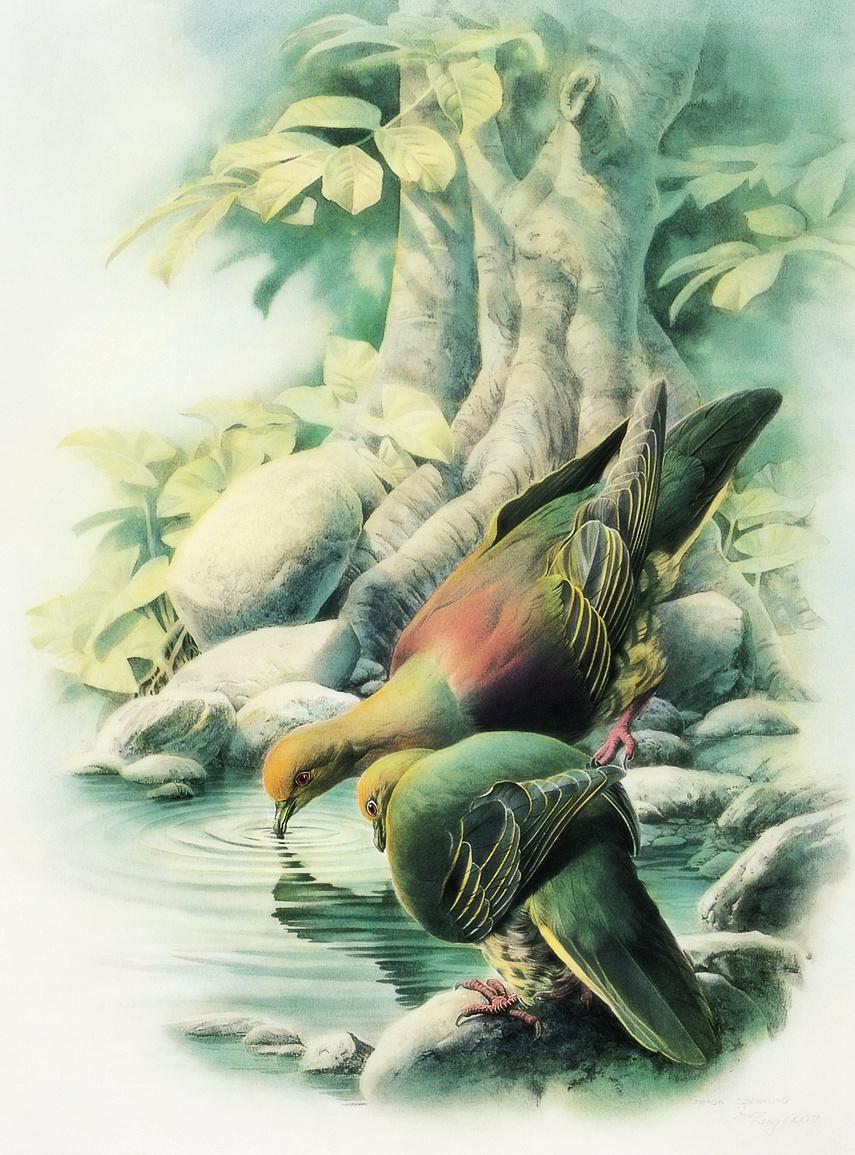 Zeng Xiao Lian. Birds 53