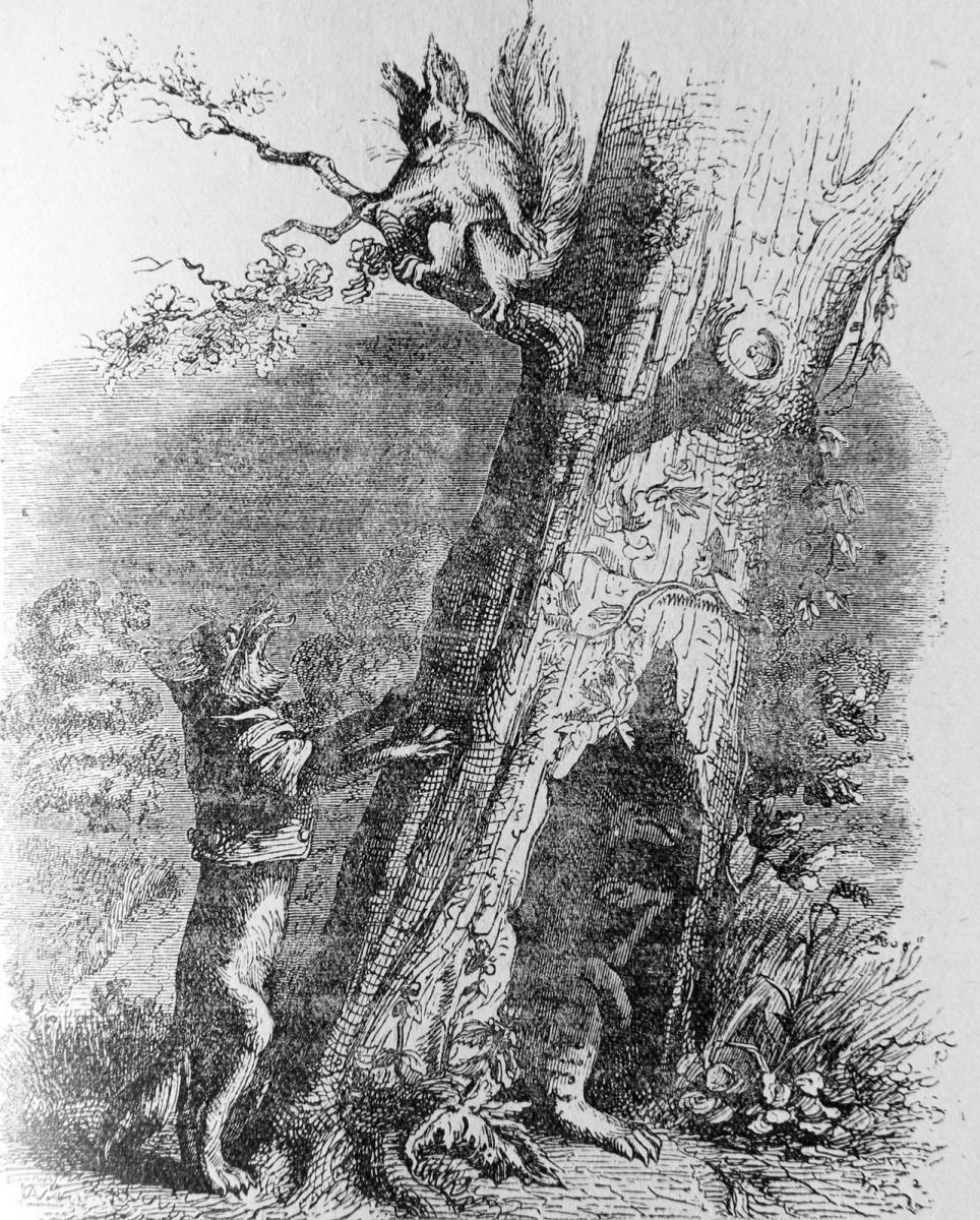 Жан Иньяс Изидор (Жерар) Гранвиль. Белка, Собака и Лисица. Иллюстрации к басням Флориана