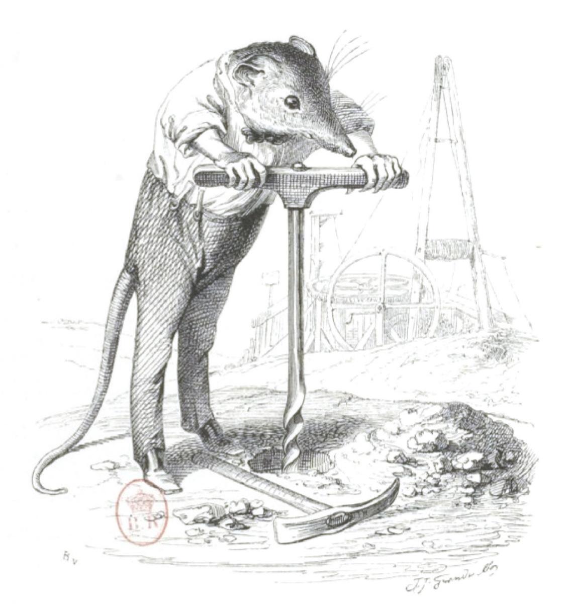 """Жан Иньяс Изидор (Жерар) Гранвиль. Борьба с плитой. """"Сцены из общественной и частной жизни животных"""""""