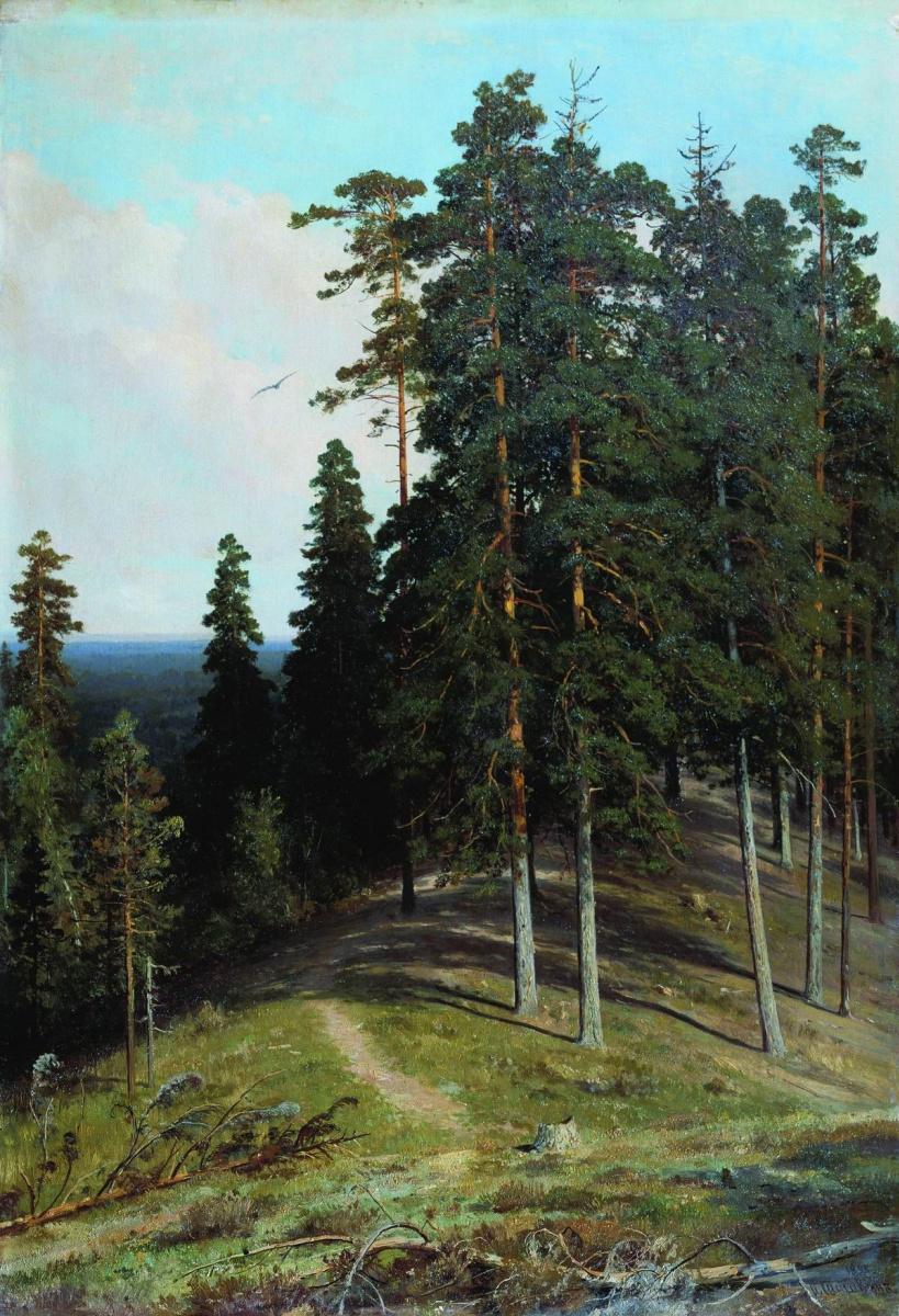Иван Иванович Шишкин. Лес с горы
