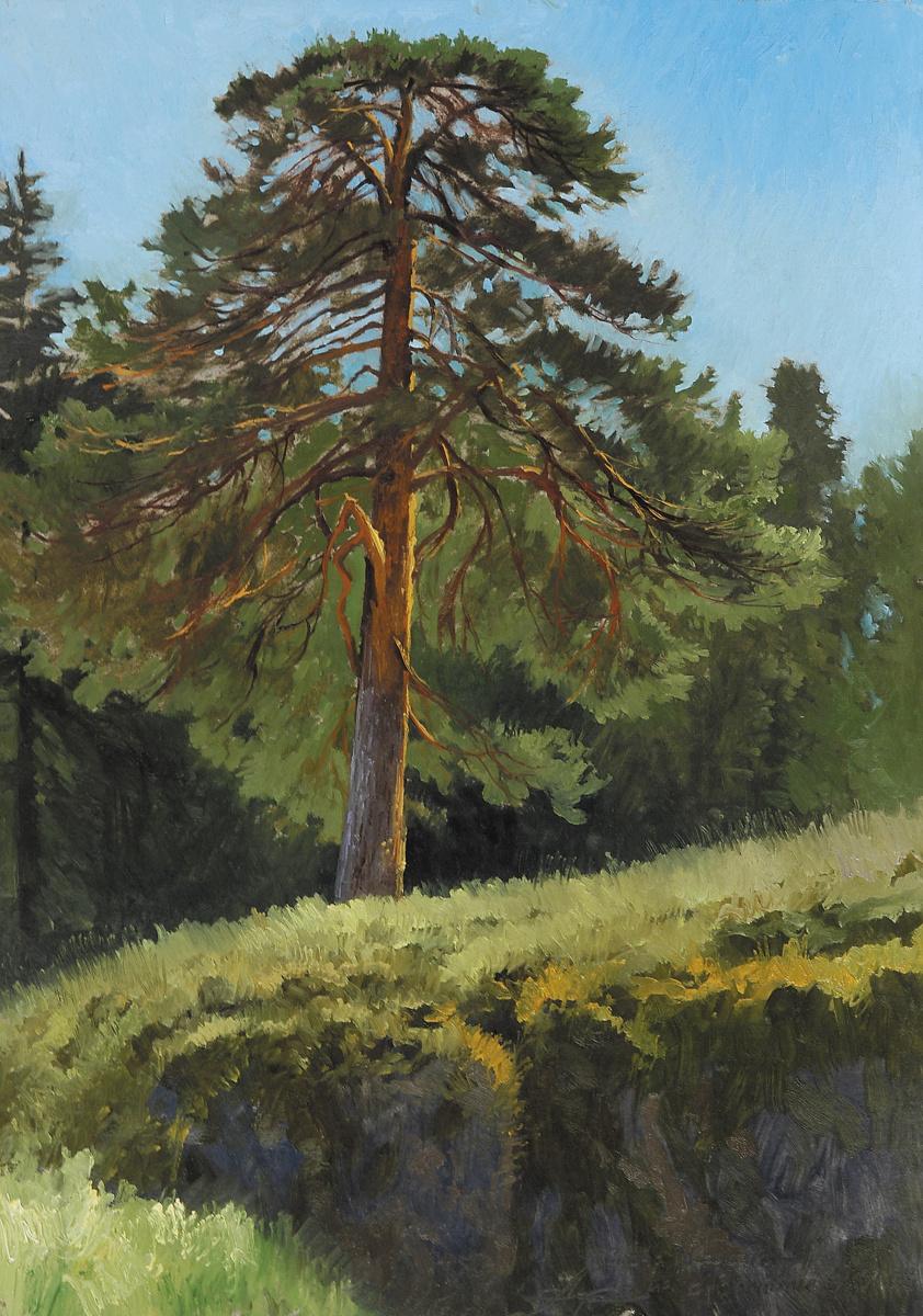 Александр Павлович Афонин. Дерево
