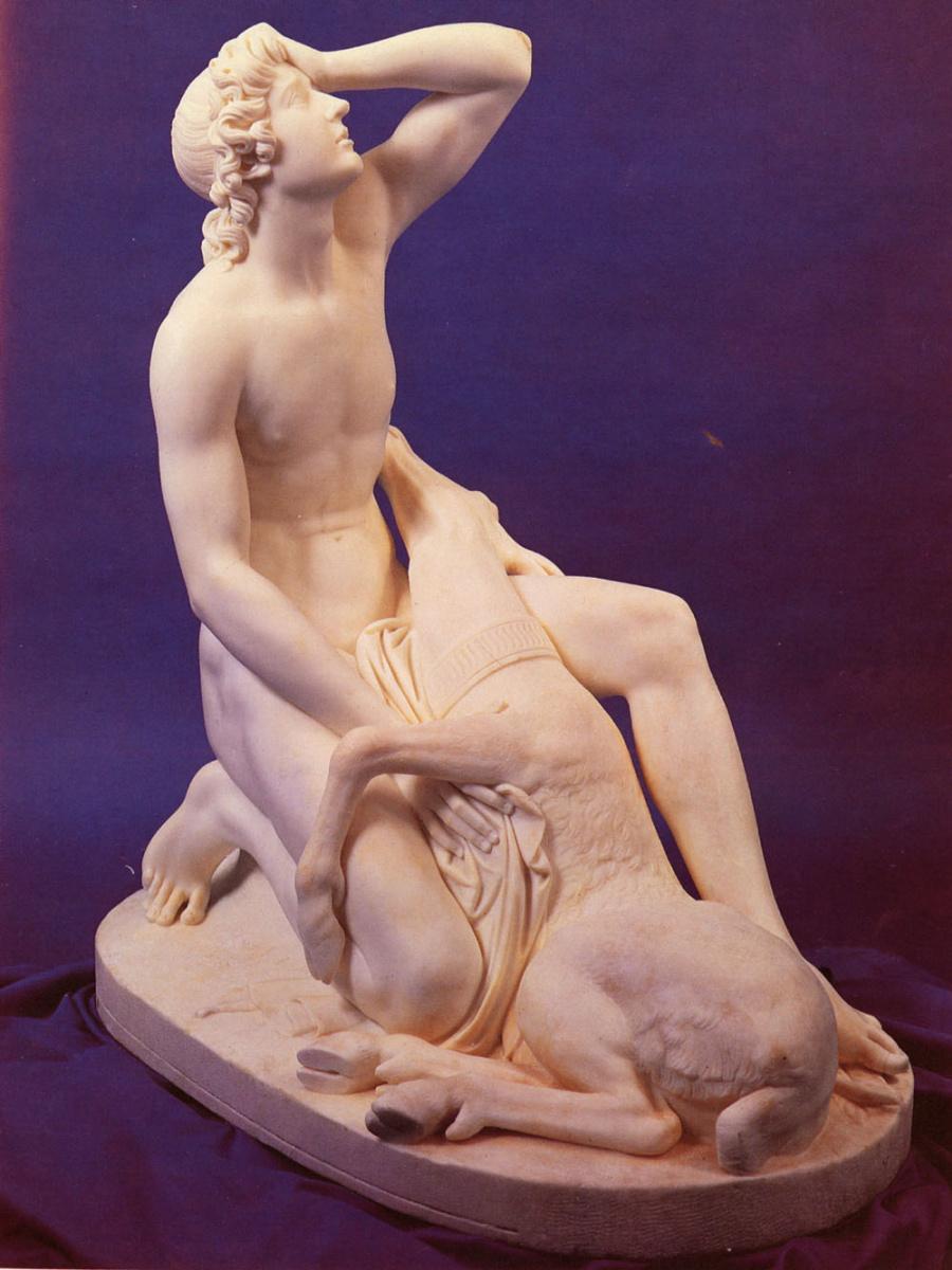 Франческо Поззи. Кипарис