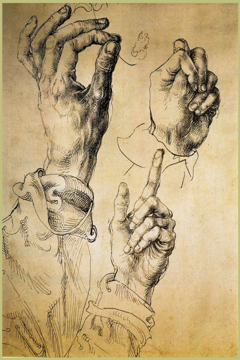 Albrecht Dürer. Study of three hands