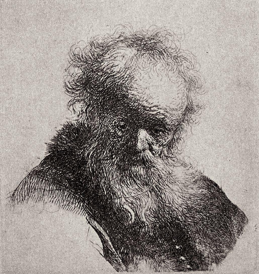 Рембрандт Харменс ван Рейн. Голова старика с длинной бородой, глядящего в сторону