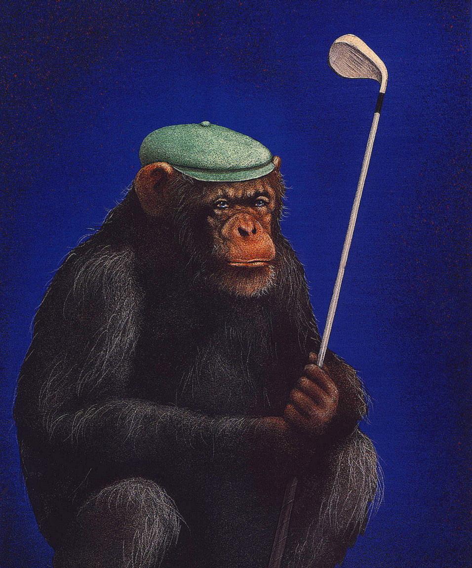 Уилл Буллас. Выстрел шимпанзе