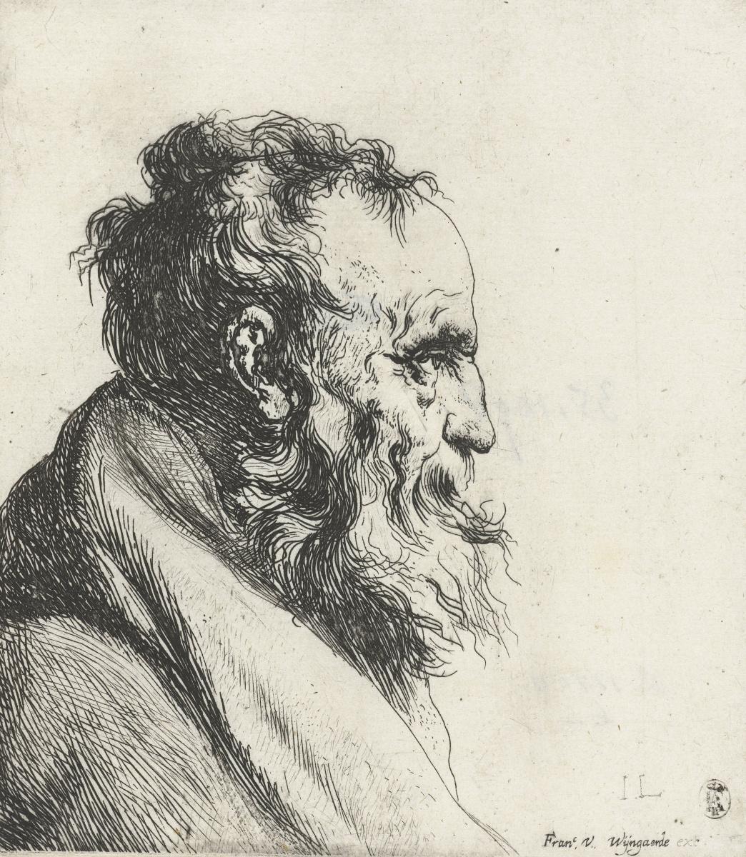 Ян Ливенс. Профиль пожилого мужчины с бородой