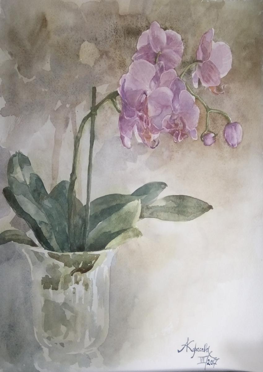 Анастасия Вячеславовна Карасева. Розовая орхидея