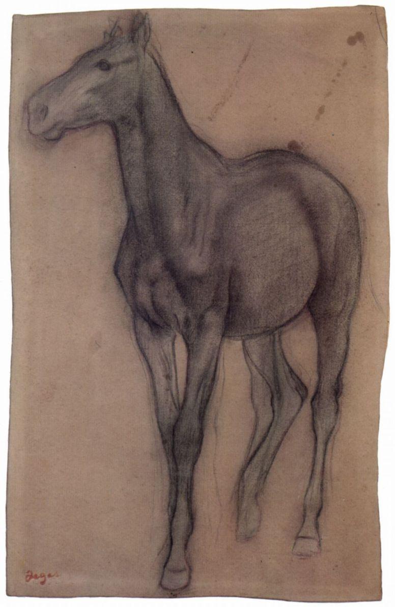 Эдгар Дега. Идущая шагом лошадь