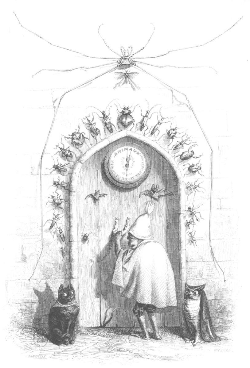 """Жан Иньяс Изидор (Жерар) Гранвиль. Вечерний визит. """"Сцены общественной и частной жизни животных"""""""