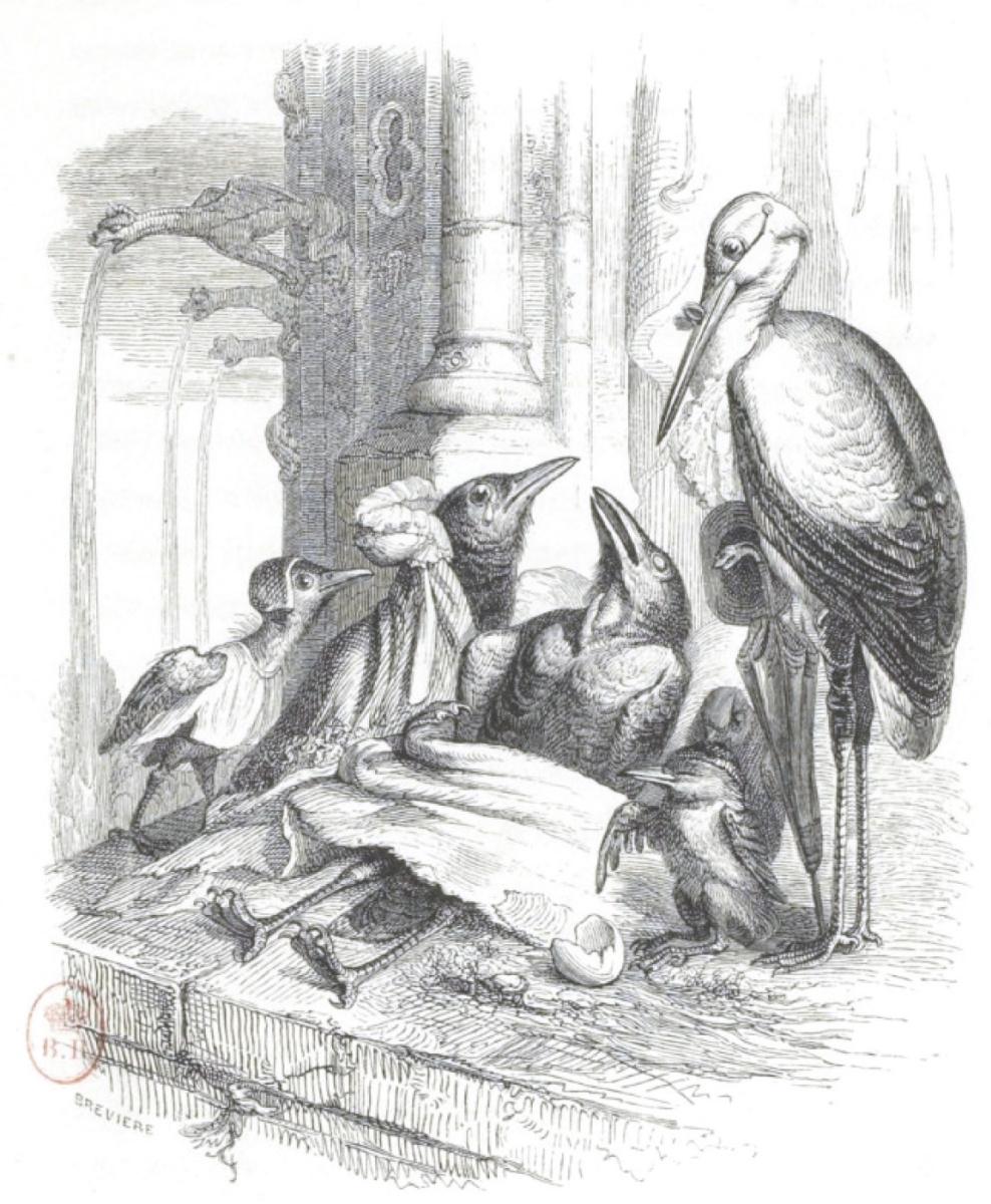 """Жан Иньяс Изидор (Жерар) Гранвиль. Его последние слова. """"Сцены общественной и частной жизни животных"""""""