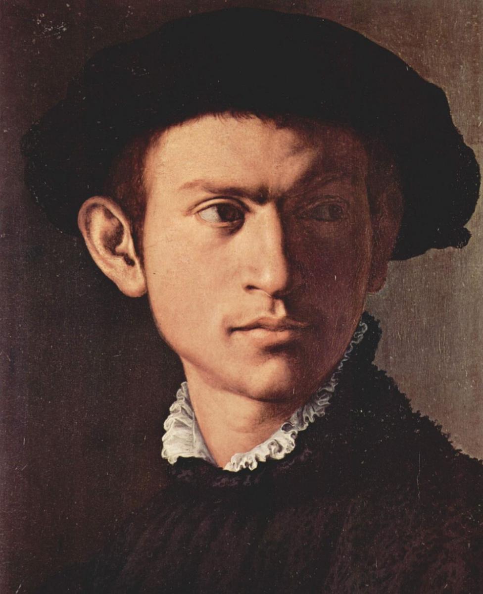 Аньоло Бронзино. Портрет молодого человека с лютней. Фрагмент