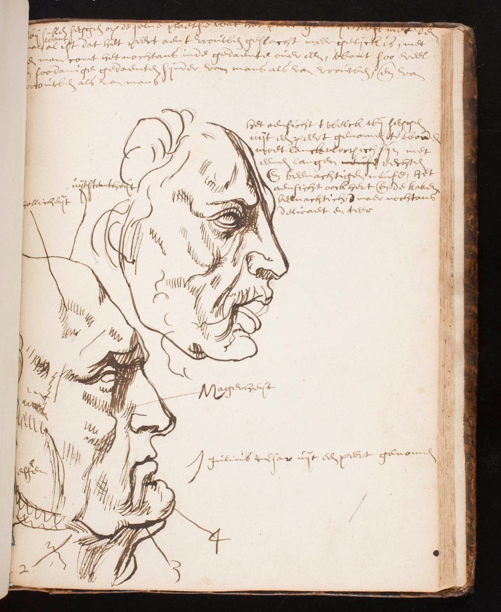 Музей Прадо приобрел редкую библиотеку Хуана Бордеса и получил за это Рубенса!