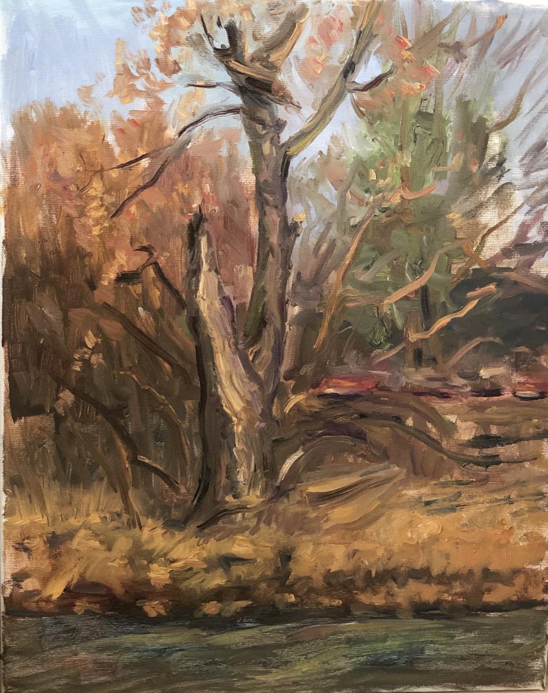 Victoria Marshakova. Broken tree by the river.