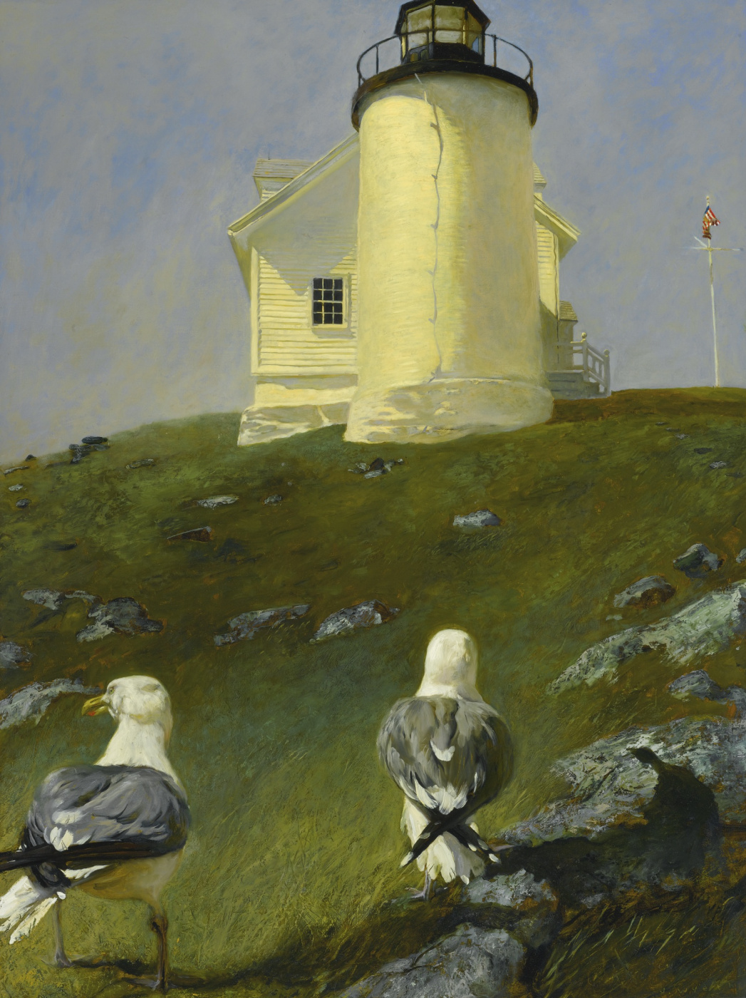 Jamie Wyeth. Seagulls