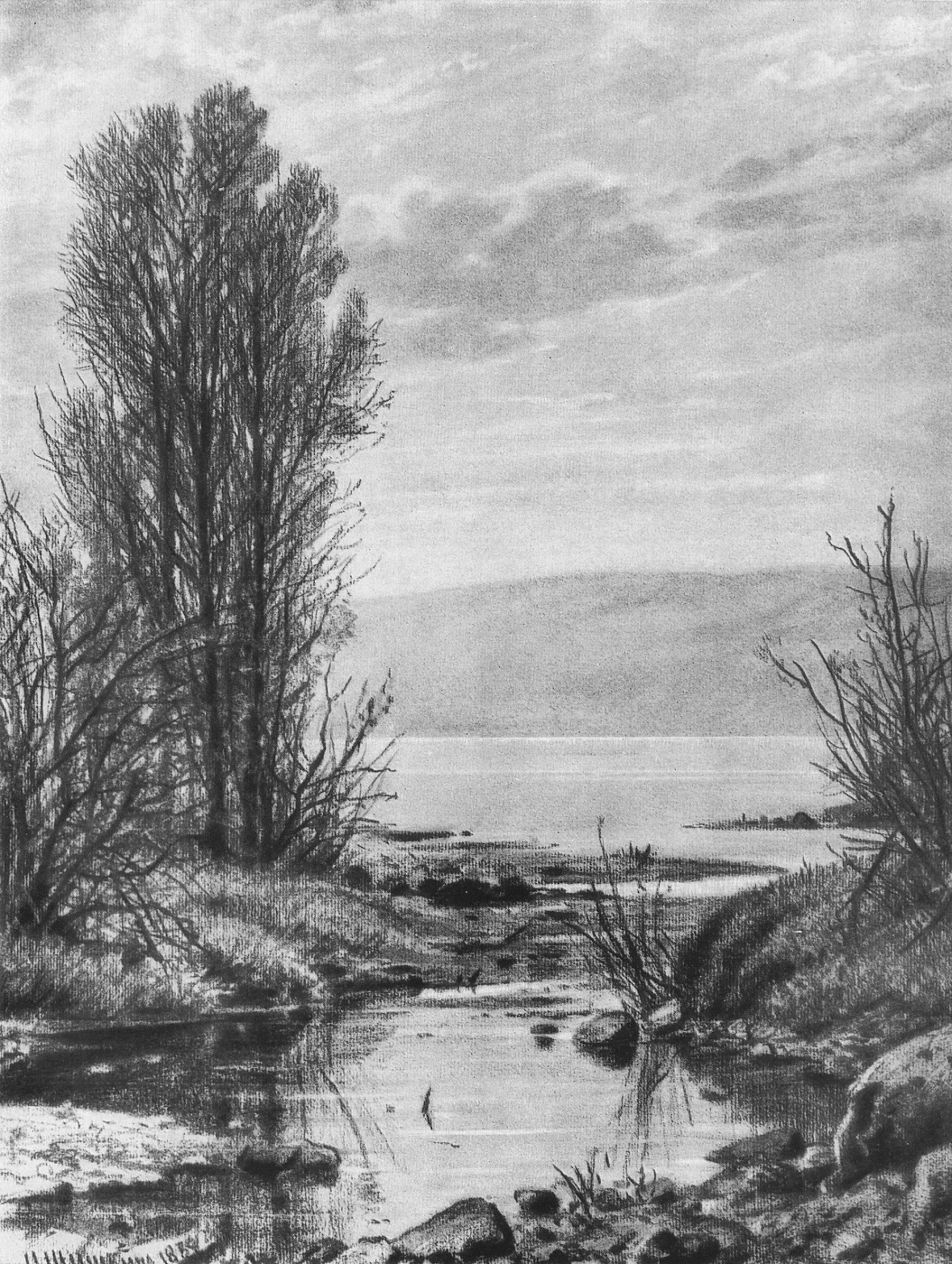 Ivan Shishkin. The shore of the lake