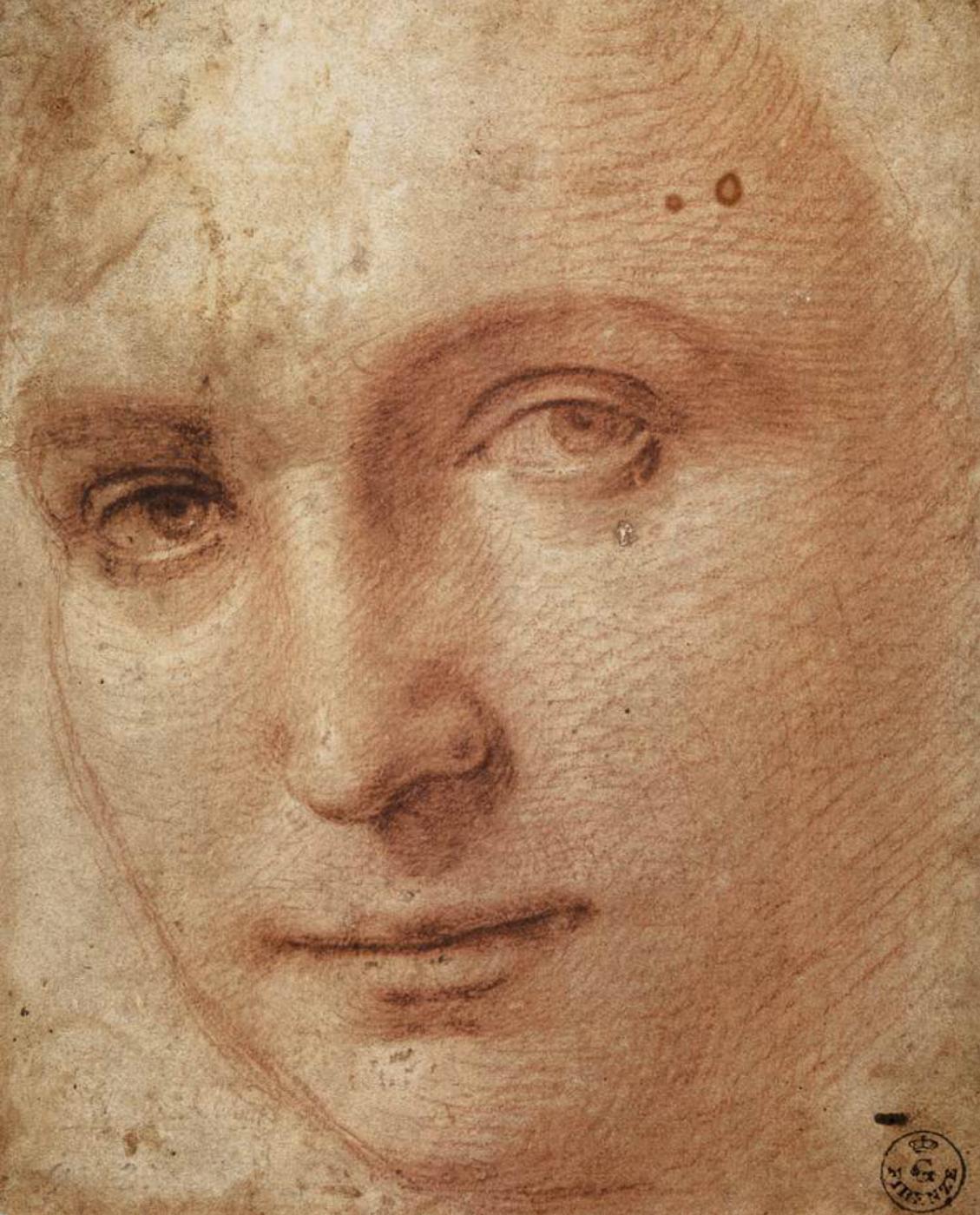 Raphael Sanzio. Portrait of a young man