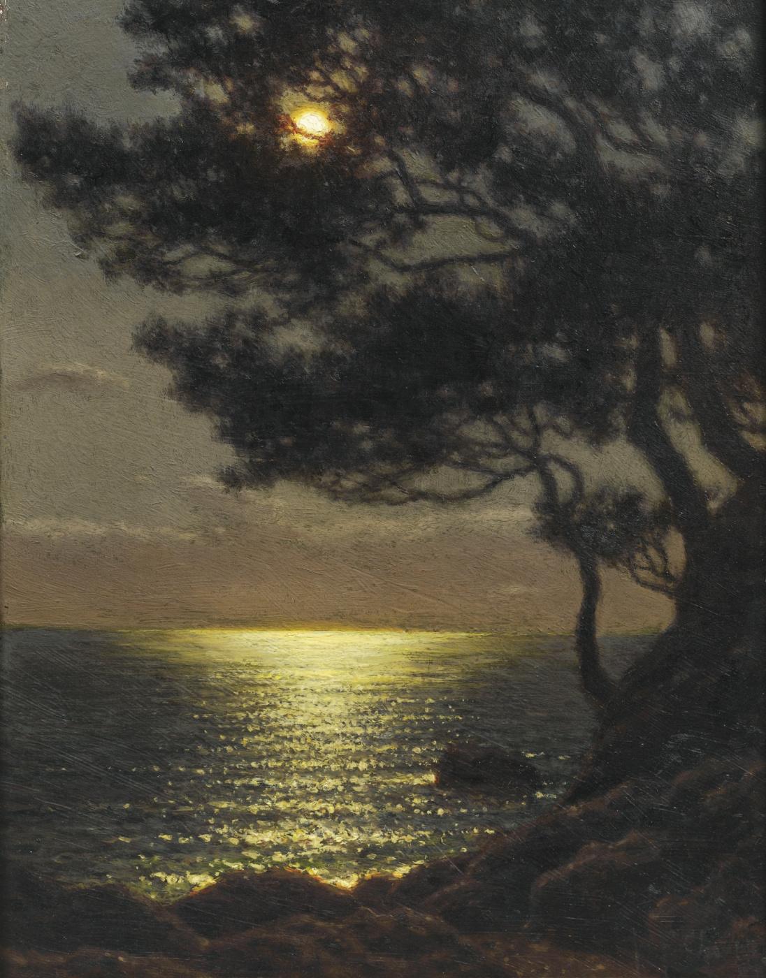 Ivan Choultsé. The coast in the moonlight