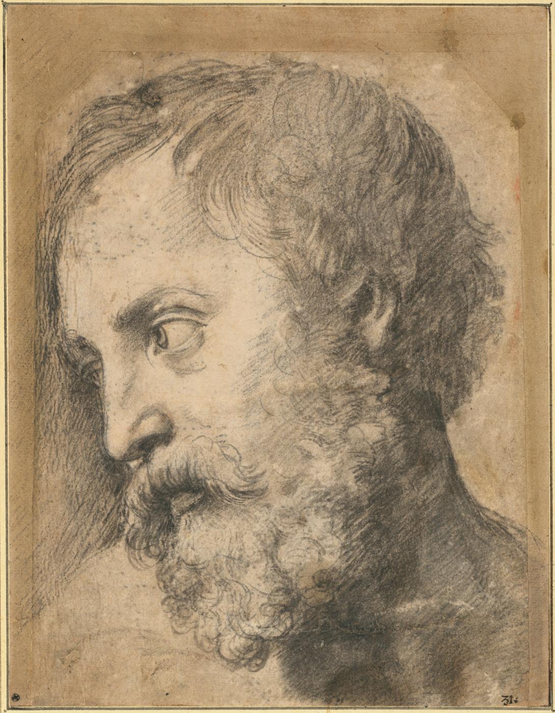"Raphael Sanzio. Sketch head of an Apostle for ""Transfiguration of Christ"""
