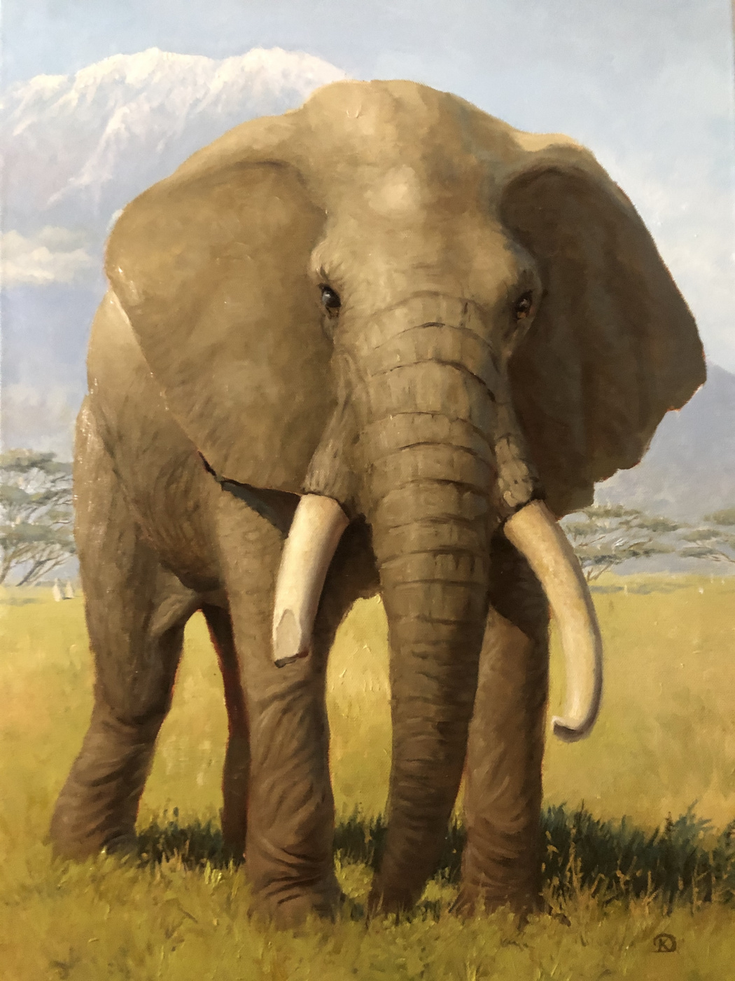 Dmitry Sergeevich Krebs. Elephant