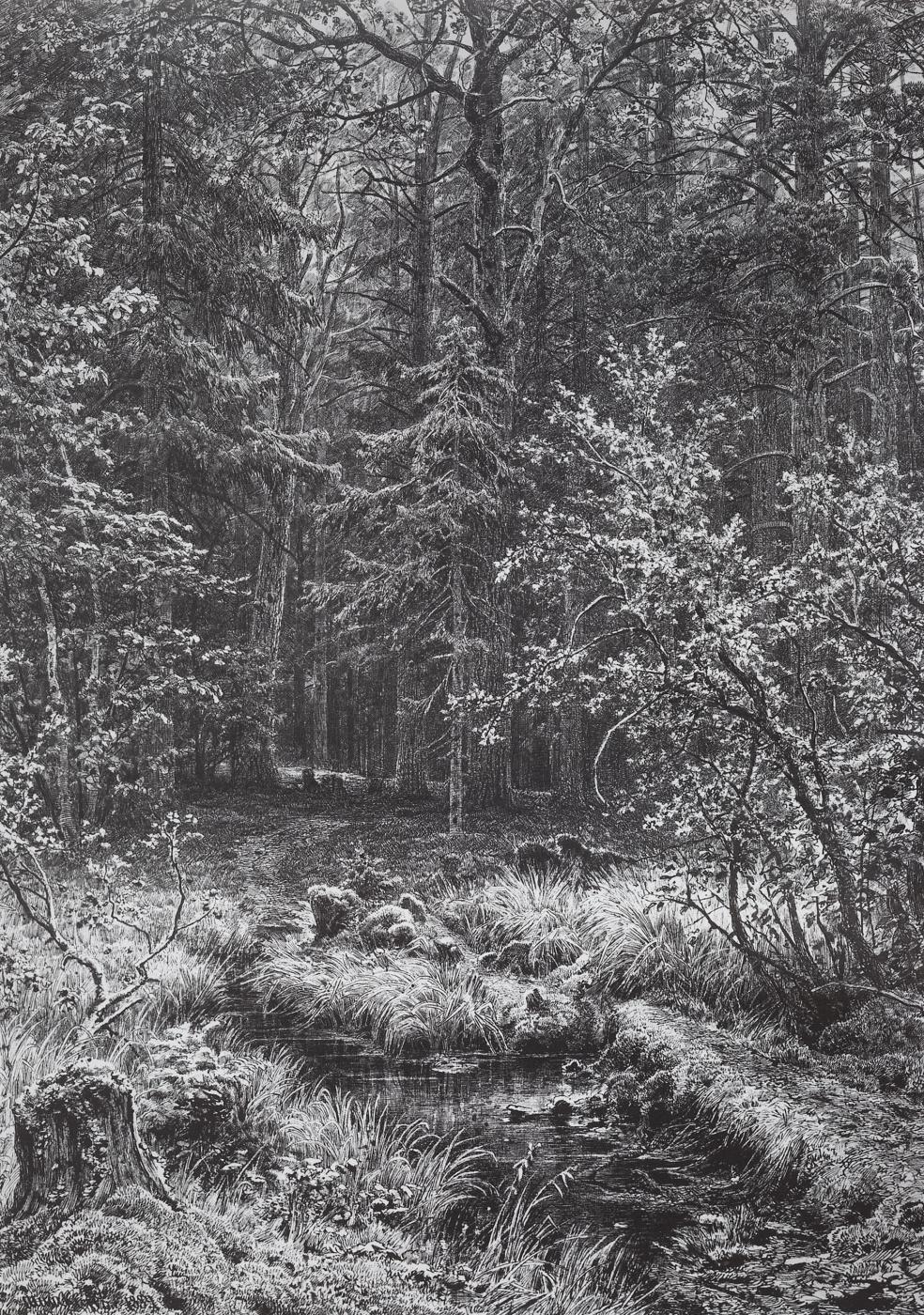 Ivan Shishkin. Forest swamp