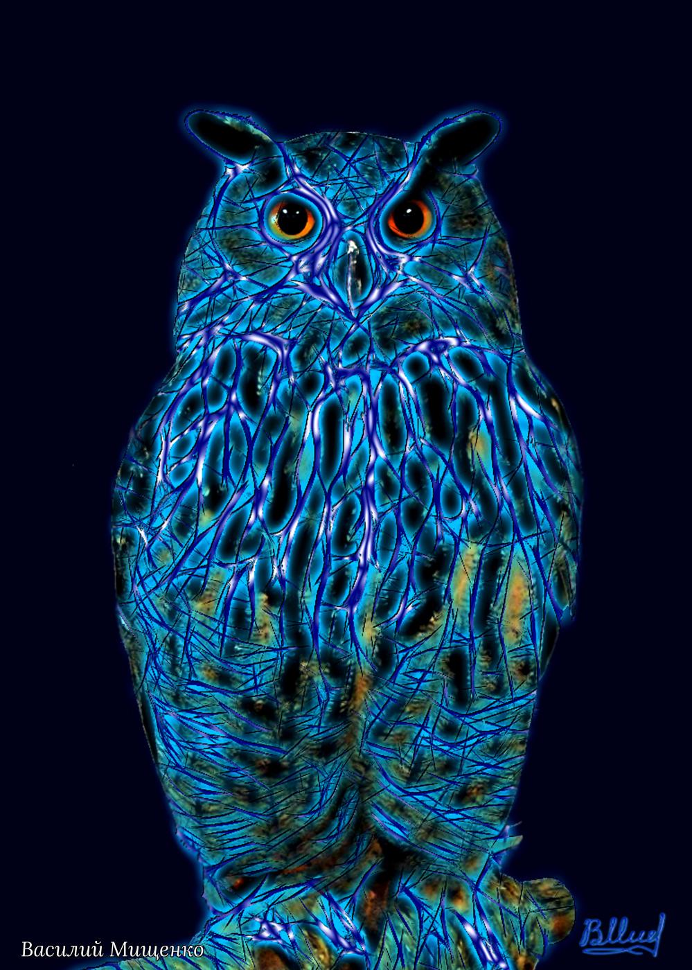 Vasiliy Mishchenko. Wise Owl